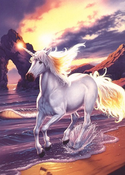 Licorne susie - Image licorne ...
