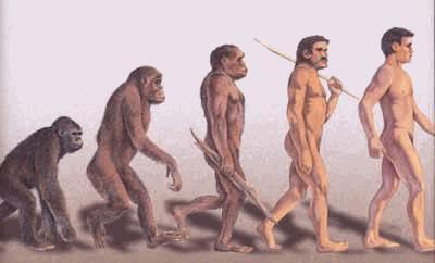 evolutionhomme.jpg
