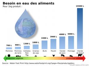 eau-fonction-aliments-800x600