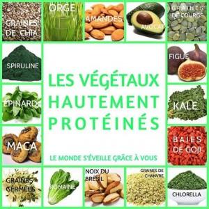 proteines_2506