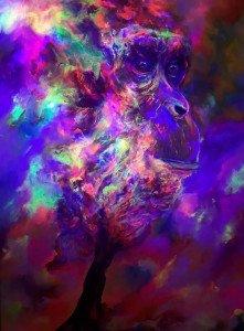 Chimpanzé 2-2018-lumière noire-Susanna Massa